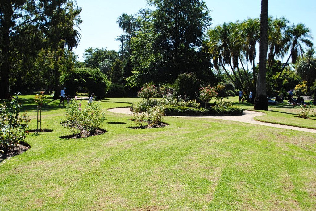 Landscape view of the Albury Botanical Gardens